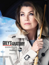 Grey&#39s Anatomy Season 12 (2015)