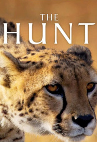 The Hunt Season 1 (2016)